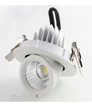 Светильник LED Trunk lamp-Triac 5500K ,12W